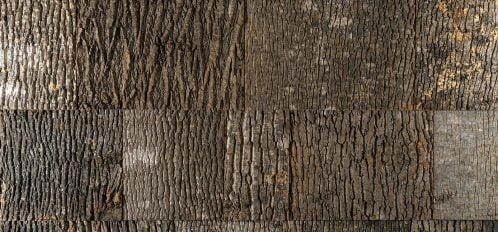Poplar Bark Wall